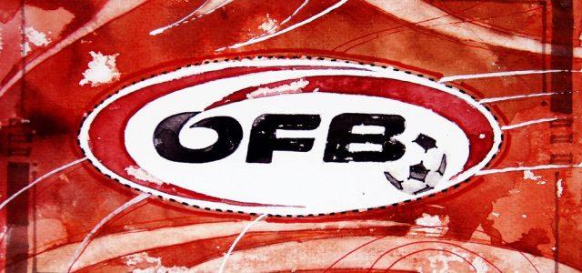 Nachwuchs: Borkovic-Verletzung beschert Haider Aufstieg
