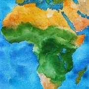 Die ersten Atemzüge des Afrika Cups: Senegal und Gabun setzen Duftmarken