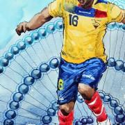 Interessantes Mittelfeld, gute Flügel: Das ist die Mannschaft von Ecuador!