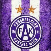 Spielerbewertung Admira-Austria: Demaku reift zur Stütze