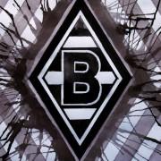 André Schubert wird Cheftrainer bei Borussia Mönchengladbach
