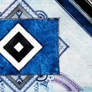 Next Generation (KW 48/2016) | 1. und 2. Ligen | Gregoritsch trifft bei erstem HSV-Sieg