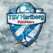 Flach spielen, hoch verteidigen: Ivo Istuk renoviert den TSV Hartberg