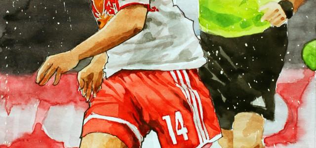 Toranalyse zur 28. Runde der tipico Bundesliga 2014/2015 | Berisha, Beric, Schobesberger