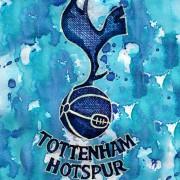 Ein ungeschliffener Diamant für den Flügel der Three Lions: Andros Townsend von Tottenham Hotspur