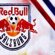 Saisonrückblick, Tops & Flops 2016/17: Red Bull Salzburg