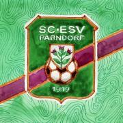 Was kann die eingeschworene Halbprofitruppe aus Parndorf? – Trainer Paul Hafner im Interview