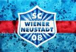 """SC Wiener Neustadt Manager Günter Kreissl im Interview: """"Mir wird nicht fad..."""""""
