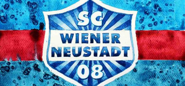 Die Wiener Neustadt Arena – Das langersehnte Stadion