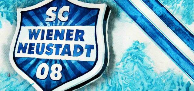 Wiener Neustadt rüstet clever auf, Schalke sichert sich französisches Offensivtalent