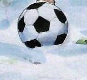 Die Top-Elf der norwegischen Tippeligaen 2012