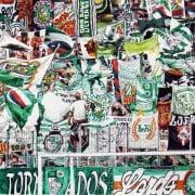 """Rapid-Fans: """"In Irland wird viel Arbeit auf uns warten"""""""