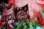 Shop_SK Rapid Wien - Block West Pyro