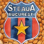 Steaua: Der einstige Armee-Klub als Aushängeschild Rumäniens
