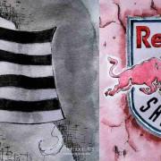 Kommentare der Sturm- und Salzburg-Fans vor dem Cup-Finale