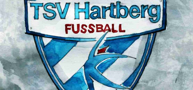 Überraschung des Spieltags (12) – Hartberg gelingt dritter Sieg in Folge