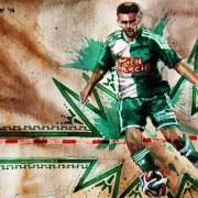 Fanmeinungen zum bevorstehenden Schrammel-Transfer zum SK Sturm