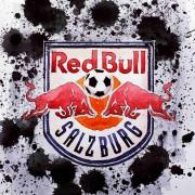 Salzburg-Anhänger vor dem Cup-Finale: Sorgen wegen dem Schiedsrichter