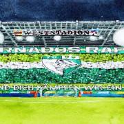 """Rapid-Fans vor Inter-Hinspiel: """"Diesen Kracher muss man genießen"""""""