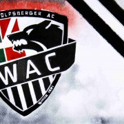 Saisonrückblick, Tops & Flops 2016/17: Wolfsberger AC