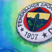 Ein türkisches Aushängeschild mit Flecken auf der weißen Weste: Das ist der Verein Fenerbahce Istanbul!