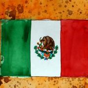 Fans und ihre Vereine (10) | Interview mit Club-Tijuana-Fan Luis (20)