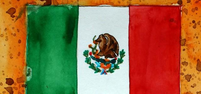 Fans und ihre Vereine (10)   Interview mit Club-Tijuana-Fan Luis (20)