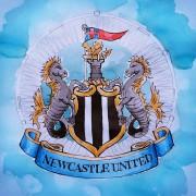 McClaren raus, Benitez rein: Trainerwechsel bei Newcastle