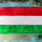 Groundhopper's Diary | Die Groupama Aréna – Rot-Weiß-Grün statt Grün-Weiß