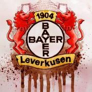 Transfers erklärt: Darum wechselte Josip Drmic zu Bayer Leverkusen